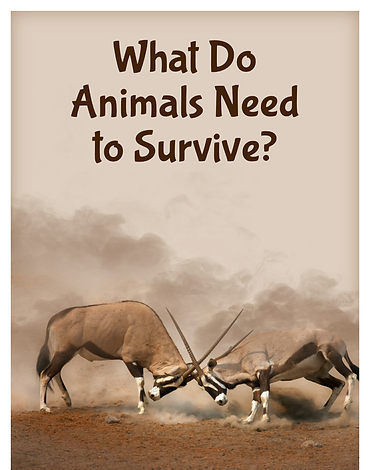 What do Animals need to survive?