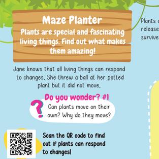 Maze Planter