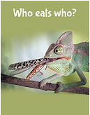 Who eats who?