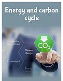 Energy and carbon cycle