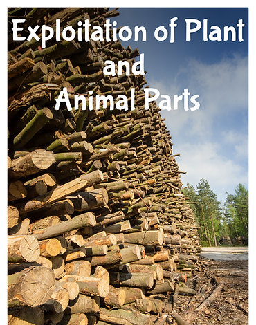 Exploitation of plant and animal parts