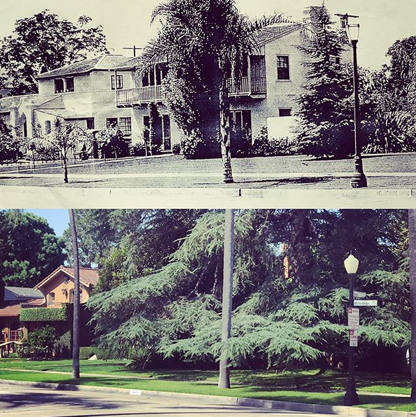 """1930s - 2019: the deodar cedar tree in the upper far right of the """"before"""" photo has grown a bit in the last 90 years, completely blocking te view of this 1934 monterey-style home on Heliotrope Drive."""
