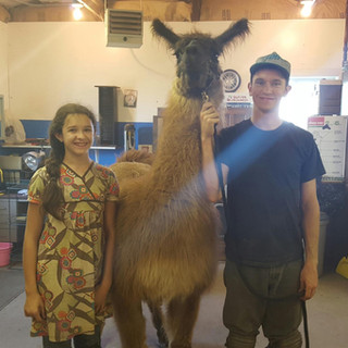 My niece and I with a tall llama.