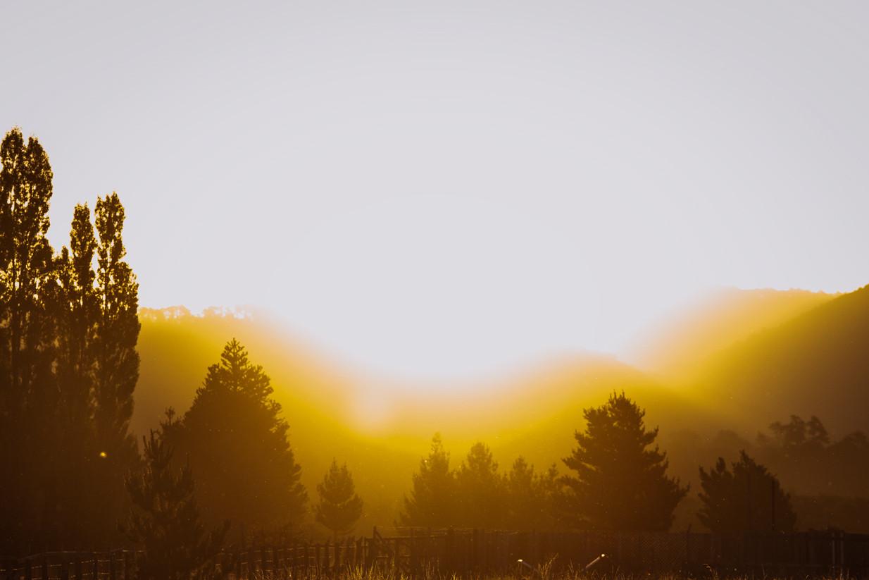 Sunset Malalcahuello Chile - Sun - Trees - Claudio Ramírez Landscape & Nature Photography