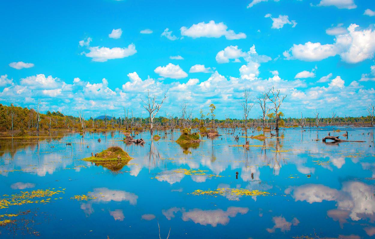 Paradise - Nature - Angkor Wat Cambodia - Claudio Ramírez Landscape & Nature Photography