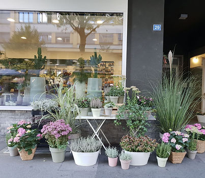 tesCommercants-Jardins-sur-Perolles-Frig