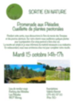 tesCommercants-atelier-automne-Les-Tenas