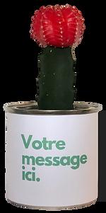 vegetalgift-plante-grasse-cadeau-entrepr