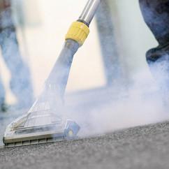steam-clean-carpet copy.jpg