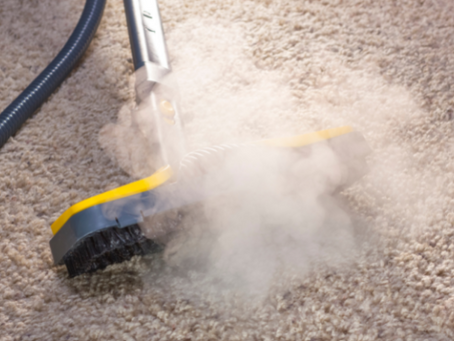 Carpet cleaning - How to chase dust bunnies out of the house?