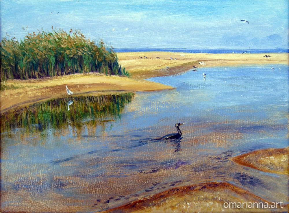 Озерцо на ракушечном пляже.