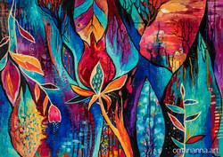 Pomegranate nights | Marianna Ochyra