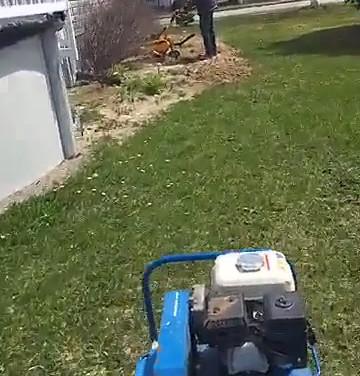 Yard Improvement