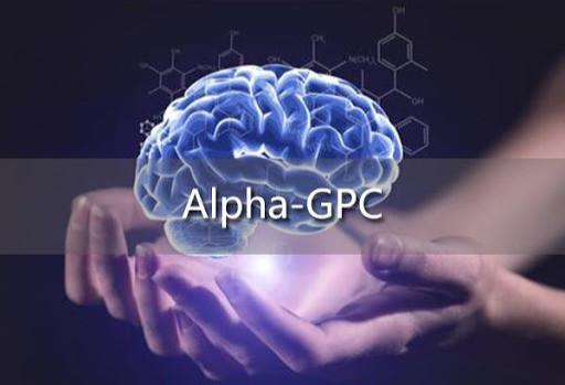 alpha gpc gnc