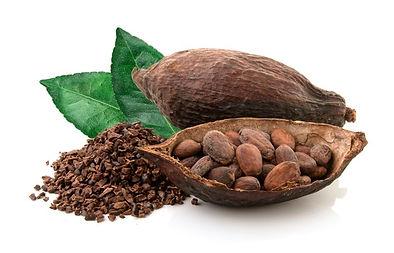 granos de cacao.jpg