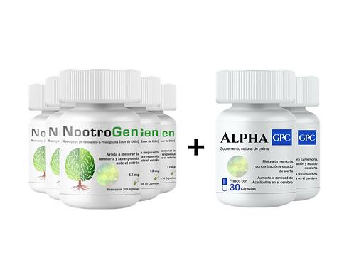 NOOTROGEN 5 + ALPHA GPC 2