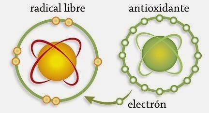 estres oxidativo bioquimica