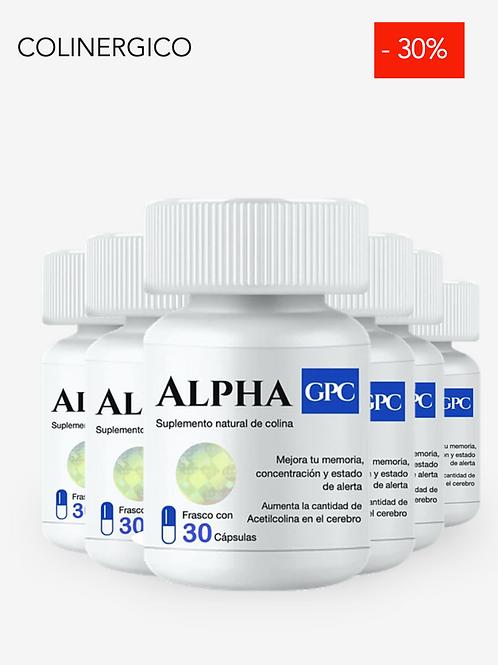 ALPHA GPC 6 FRASCOS