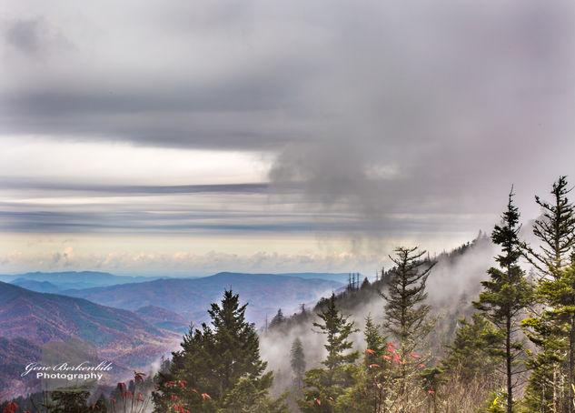 A Smoky Mountain Morning