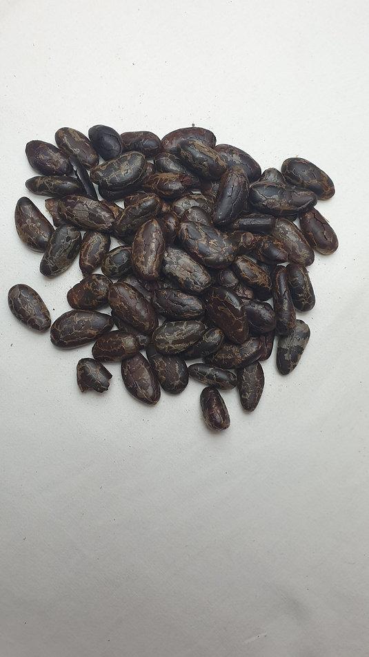 Fèves de cacao torréfiés