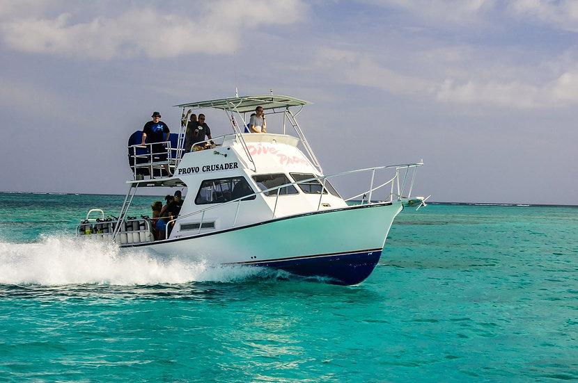 Dive Provo Turks & Caicos