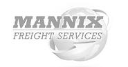 Mannix grey.png