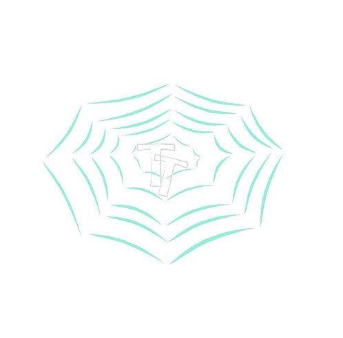 small spider web
