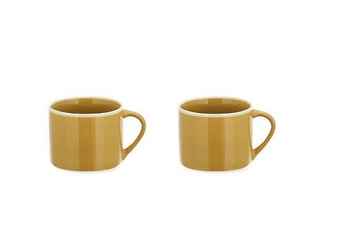 Set of 2 Small Mustard Datia Mug