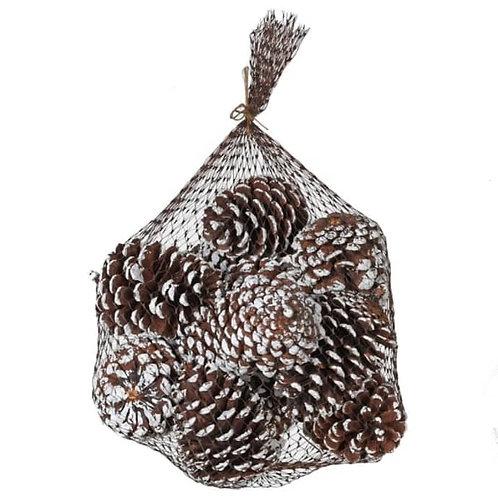 Pinecones in a Bag