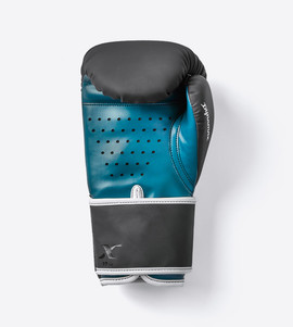 X7-10 Inspire Boxing Gloves