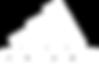 Logo - adidas white.png