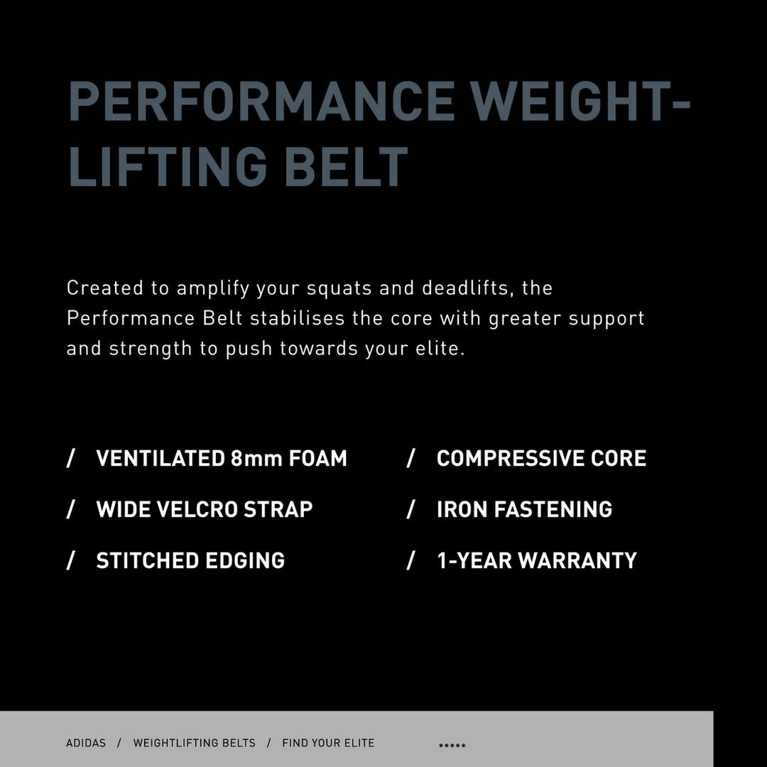 adidas performance weightlifting belt specs