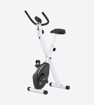 Dynamax Folding Bike