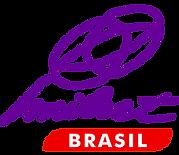 logo-milset-e1433027626898.png