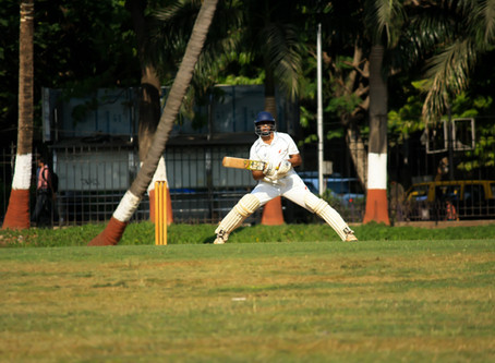 What Do I Know of Cricket?