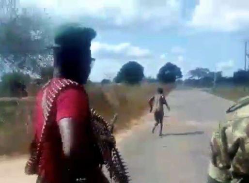 """AI denuncia """"vídeo horrendo"""" de execução de mulher pelas FDS"""