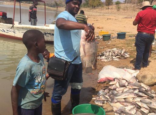 Celebrações do dia Maritimo Mundial: ADPP Melhora as Condições de Trabalho dos Pescadores