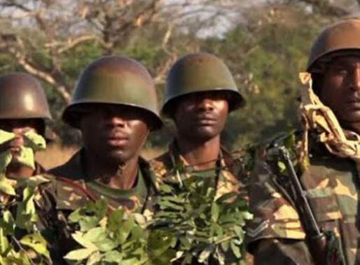 Tanzania army descends on Mozambique border