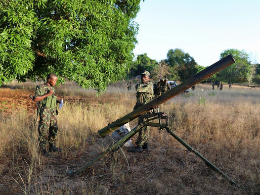 FDS repelem tentativa de ataque a Phundanhar