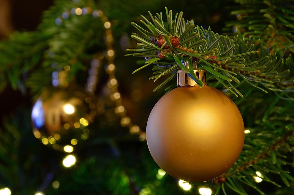 Rami di un albero di Natale vero, con due palline dorate come decorazione