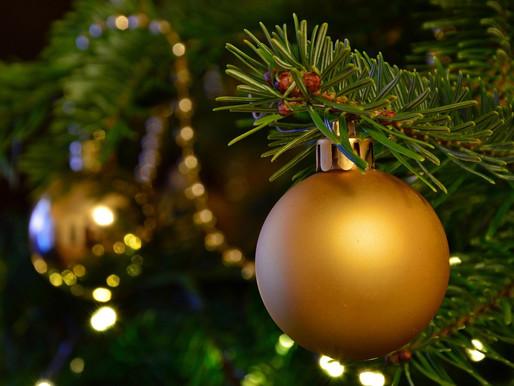 Alberi di Natale: conservazione e Treesitting