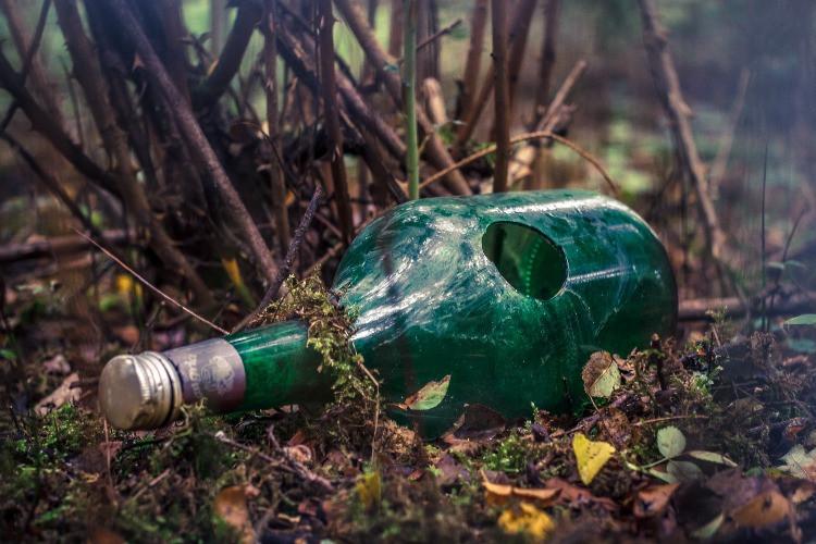 una bottiglia di vetro rotta, a terra sull'erba