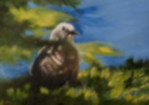 Friend at Crater Lake.JPG