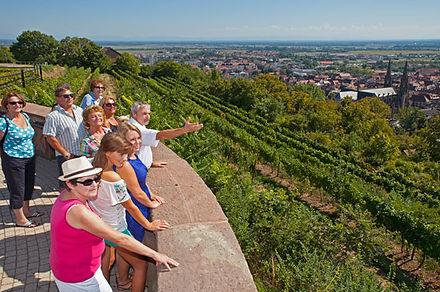 Sentier-viticole-4.jpg