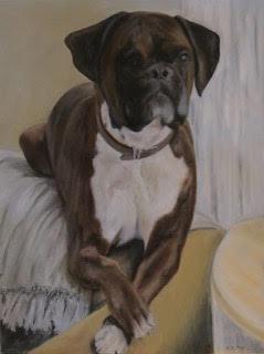 Neil Prior Animal Portrait