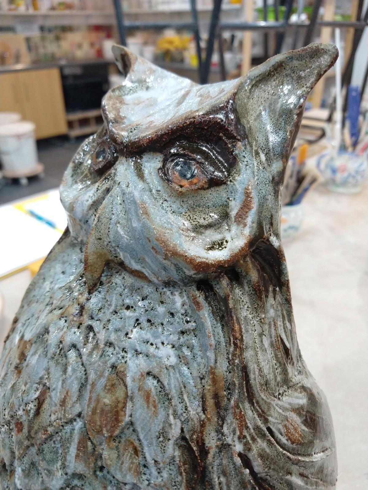 Close up of glazed owl