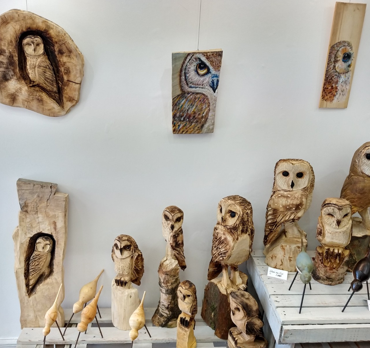 Russell McDonnell Owls