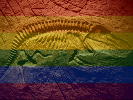 Geos Department Uncovers Gay Fossils