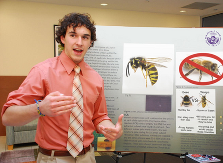 """""""Actually, They're Wasps,"""" Reminds Smartest Student at Williams"""