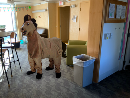 A Cry For Help: Will Someone Please Be the Other Half of This Horse Costume I Bought?